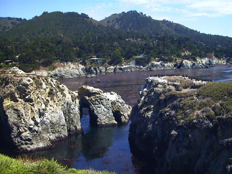 Point Lobos 77K jpeg